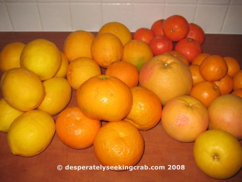 Huge home-grown lemons, Huge home-grown oranges, Tangerines, Navel Oranges, Ruby Pink grapefruit, White grapefruit, Seville Oranges